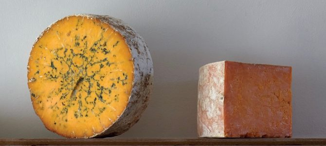 Books – River Cottage Handbook No.16: Cheese & Dairy by Steven Lamb